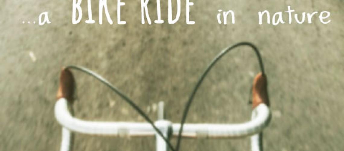 bikesharing, biketour, bikeholiday, travel, bikeride